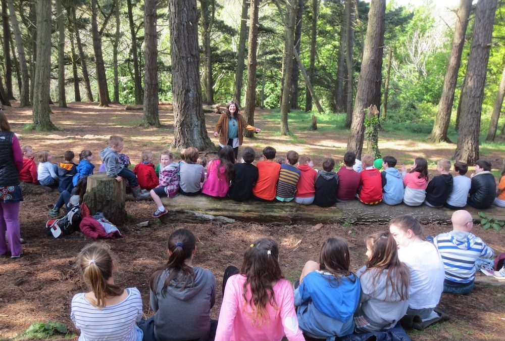 Forest School Storytelling