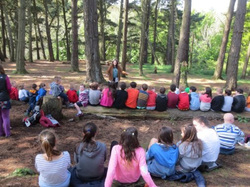 Forest School Storytelling